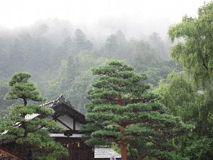 雨上がりの城山