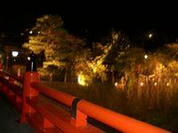 中橋ライトアップ